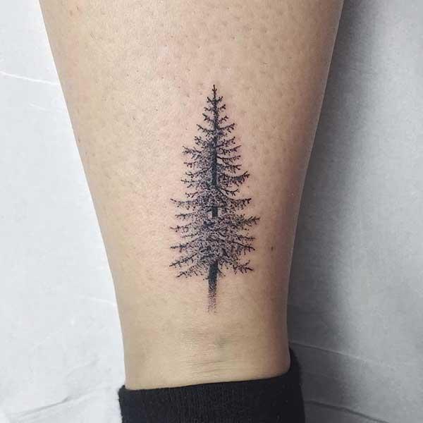 pinheiro 1
