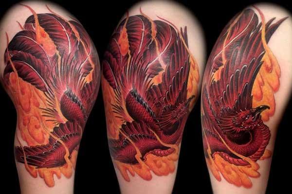 79 Tatuagens De Fenix Para Renascer Das Cinzas Fotos Desenhos
